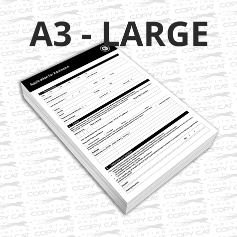 A3 - Large Colour Document Printing
